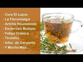 Este Té cura Fibromialgia, Artritis Reumatoide, Esclerosis Multiple, Infecciones de Garganta y Mas - YouTube