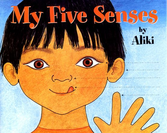 Exploring Our Senses Lesson Plan – Touch (Foundation)Australian Curriculum Lessons