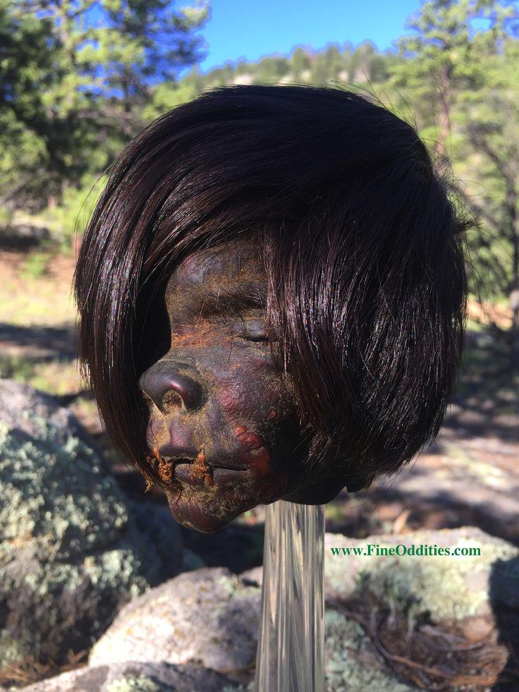 Real Shrunken Head for Sale! www.RealShrunkenHeads.com