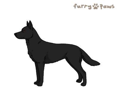 Furry Paws // UCH Kip's Hogwarts [22HH 1.588] 11.3 577 *BoB*x24's Kennel