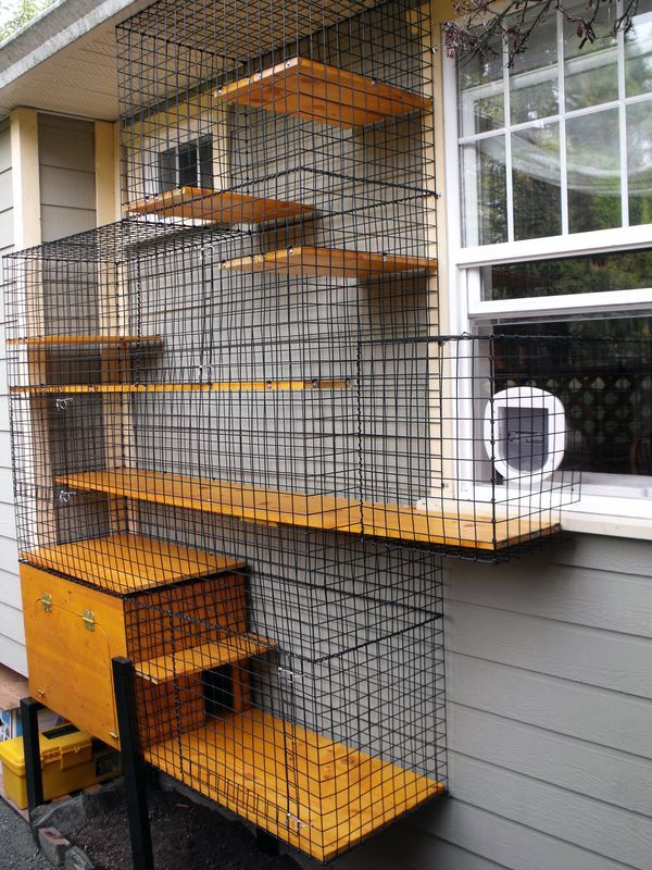 233 best images about outdoor cat enclosures and catico 39 s on pinterest cats for cats and kitty. Black Bedroom Furniture Sets. Home Design Ideas