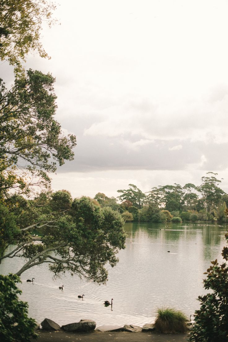 Several locations at MOTAT have a view of the beautiful Western Springs.  #Westernsprings #Lake #Beautifulwedding #Scenic #Romantic #MOTAT #Unique #Weddings #Vintagewedding #Vintage #Weddinghire #Aucklandweddings  www.motat.org.nz