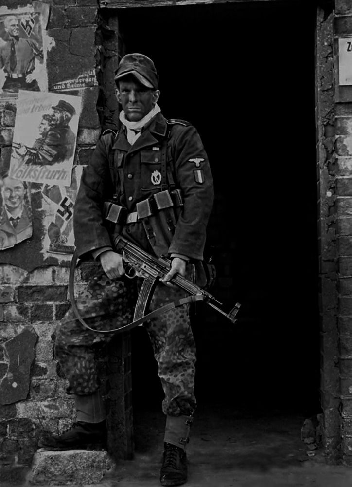17 best images about ww2 ss div on pinterest soldiers - French div 2 ...