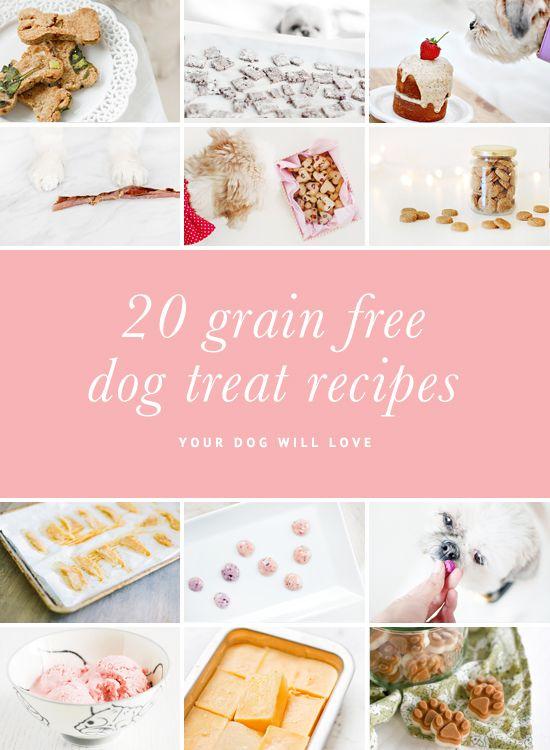 1049 Best Pet Crafts Diy Images On Pinterest Dog