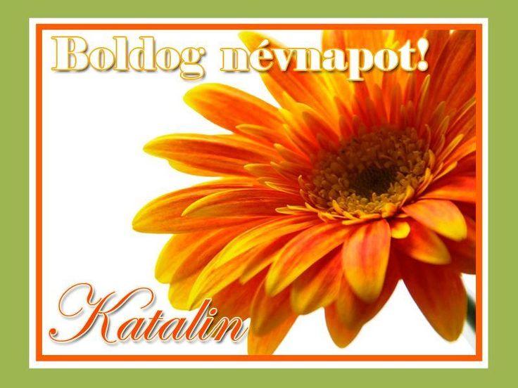 Boldog névnapot, Katalin!
