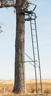 Big game treestands platinum odyssey 20 ft ladder stand now to put