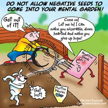 Positive and negative seeds