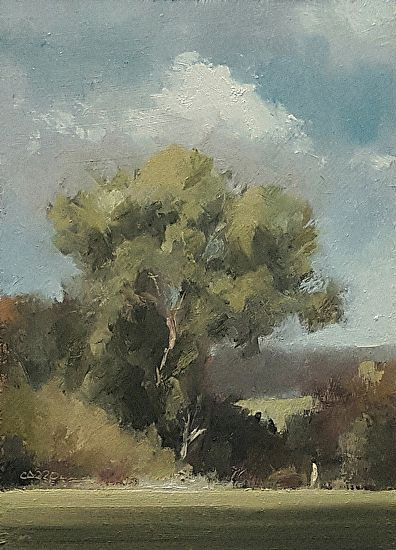 Doltons Farm Tree, Beds by Neil Carroll Oil ~ 7 x 5