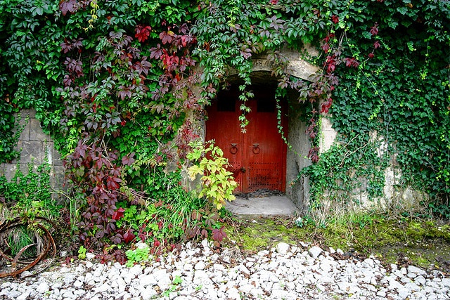 Wine Cellar, Eger