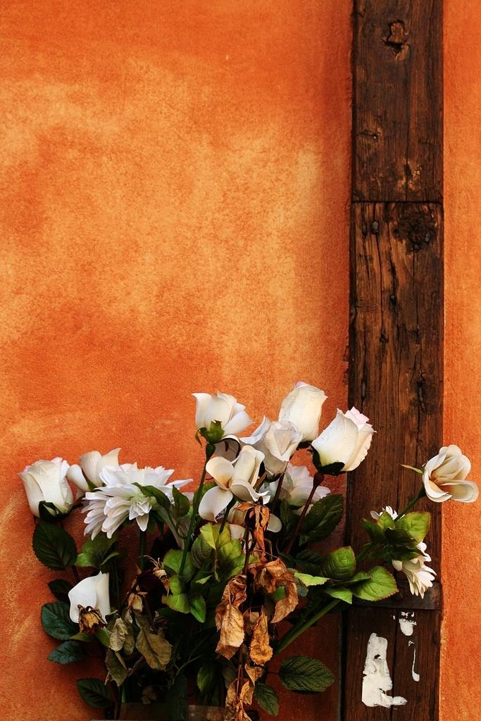 Trastevere's walls.