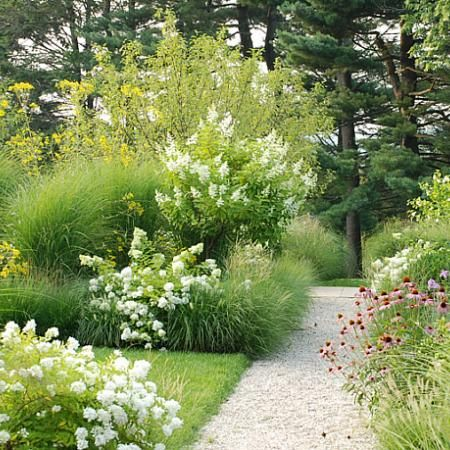 Grass and Flowers... like a meadow morphed into a border garden.