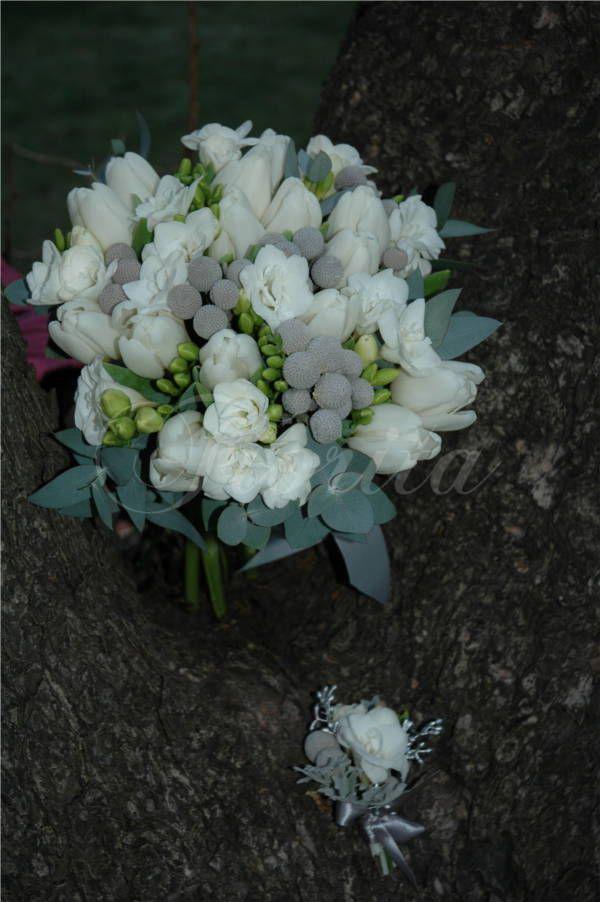 Svatební kytice z tulipánů, frézií a brunií. Bride's bouquet of tulips, brunias and fresias Букет невесты из тюльпанов, фрезий и бруний.