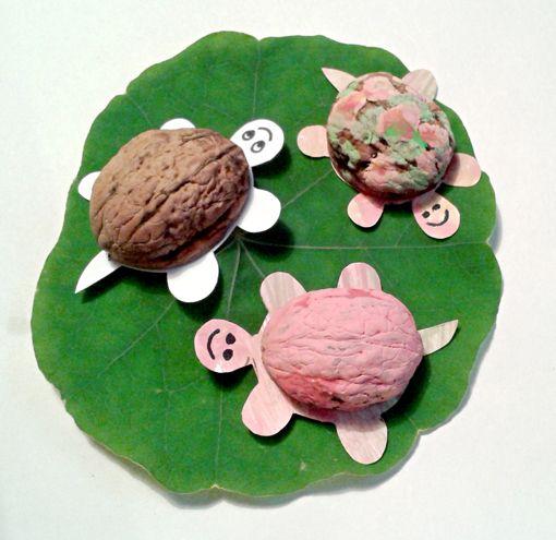 želvičky (skořápky z vlašských ořechů, papír, akrylové barvy, černý fix)