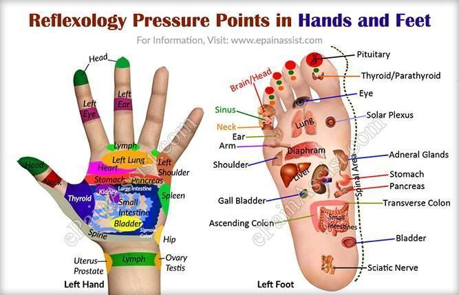Best 25 Pressure Points Ideas On Pinterest Reflexology