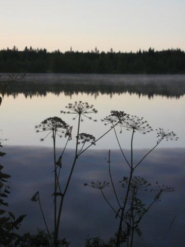Lapland / Kemijoki