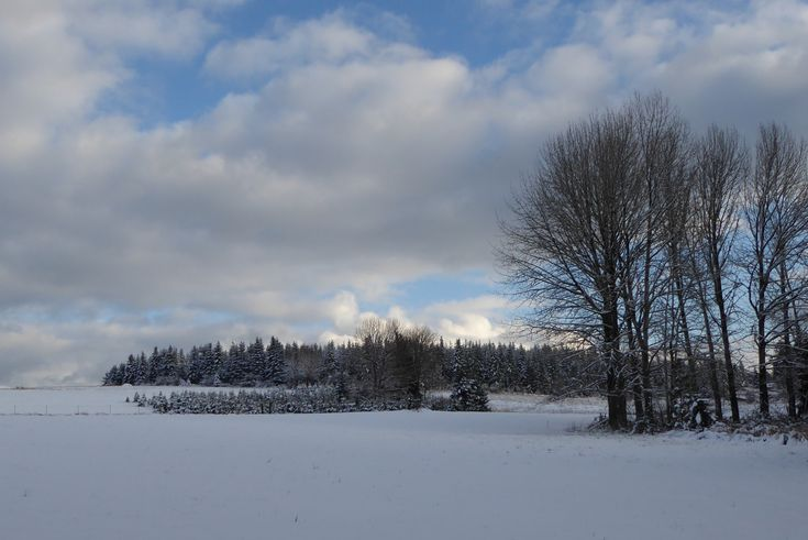Crooked Finger Farms. A rare snow day on the farm. #glamping #vacationrental #oregon  #farmstays