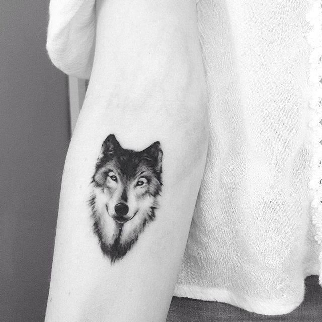 Wolf NE AB #tattoo #tatuaje #blackandwhite #wolf #lobo #animal #ab