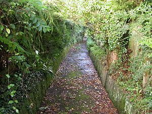 Drake's Leat - I used to walk it with my Uncle Frank in Tavistock. His pipe of cherry tobacco was heavenly.