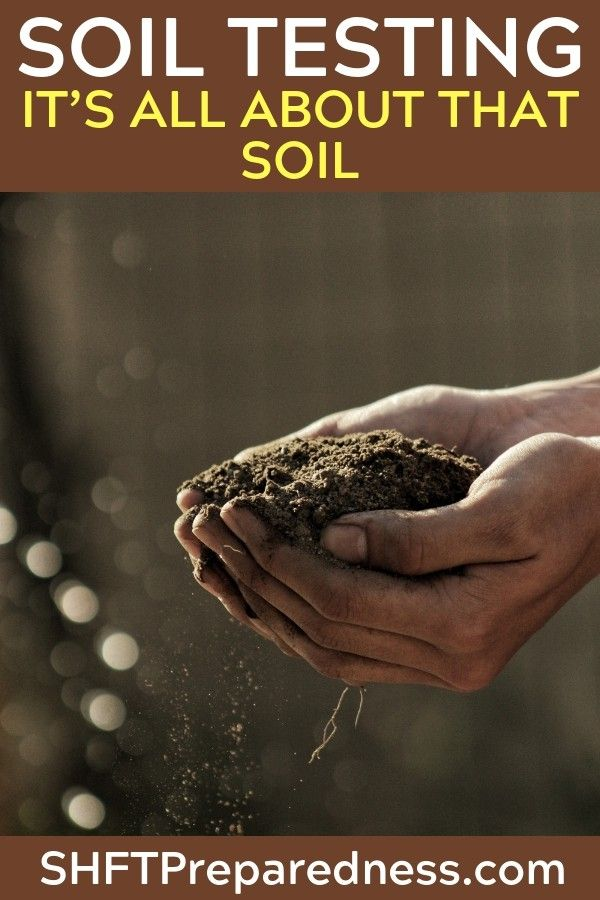 Soil Testing It S All About That Soil Garden Soil Biodynamic
