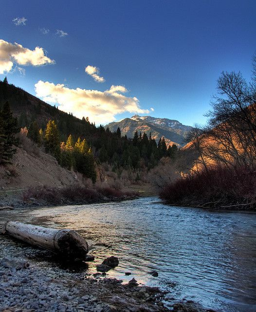 37 best wow images on pinterest nature destinations for Best fishing in utah