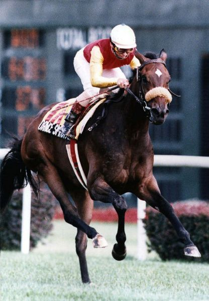 Jockey Pat Day rides Dance Smartly to victory in the Breeders' Stakes at Woodbine Racetrack in 1991, sweeping the Canadian Triple Crown. After winning the Breeders' Cup Distaff, she was awarded the Eclipse Award as North American's top filly. Her sire was Danzig, a son of Northern Dancer.