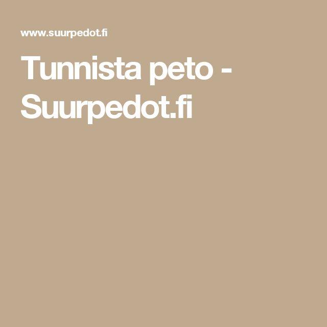 Tunnista peto - Suurpedot.fi