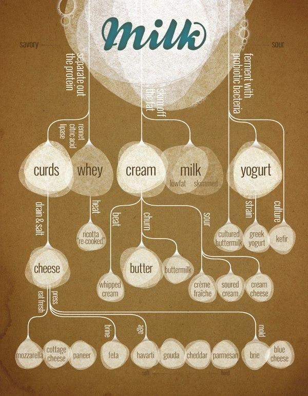 Secret Life of Milk Infographic