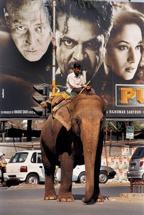 """'Bollywood Dreams' photographic series documents the vanishing world of old style Indian cinema. From website: """"An elephant passes by a huge cinema advertisement billboard in Mumbai, India. In Mumbai, hand-painted have been almost entirely replaced by printed ones."""" Photo: Jonathan Torgovnik."""