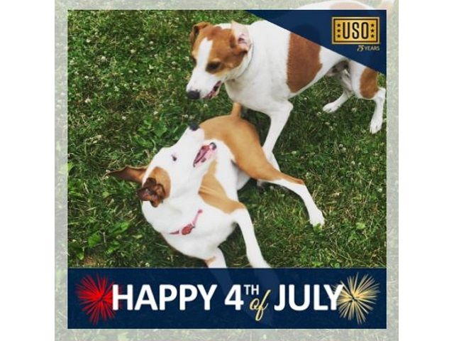 Just in time for the Fourth of July, United Service Organizations created a temporary profile picture frame for Facebook users.