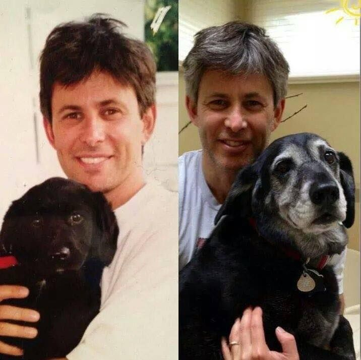 A powerful picture of a man and his dog taken 15 years apart--same man same dog. Owning a pet is a lifetime duty. If this is not what you had in mind you might want to consider not getting a pet.