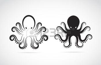 octopus: image d'un poulpe sur fond blanc.                                                                                                                                                                                 Plus