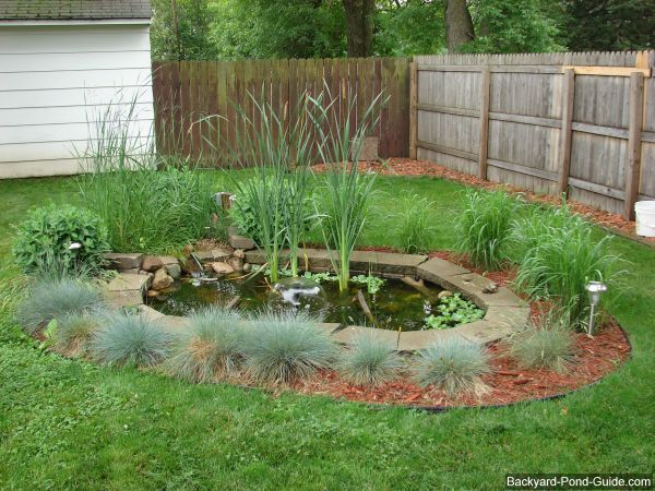 60 best images about my don 39 t tell mom but i 39 m building for Diy outdoor pond