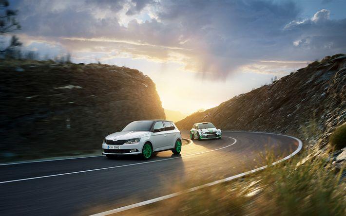 Download wallpapers Skoda Fabia RS, 4k, 2017 cars, new Fabia, Skoda