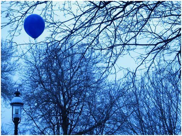 Google-kuvahaun tulos kohteessa http://avoision.com/portnoy/images/2008/february/blueBalloon.jpg