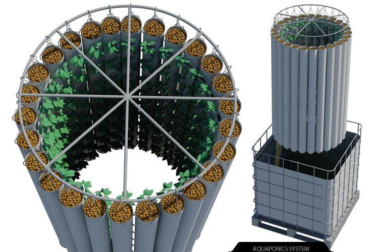 aquaponic design plans | Best Aquaponics Backyard Set Up For Small Space