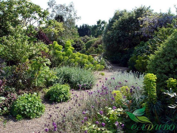 Красивые сады мира фото