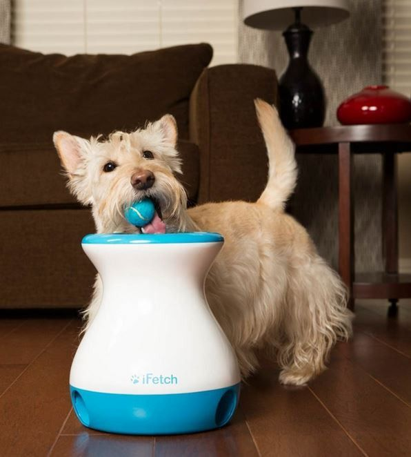 Description What Our Top Dog Says About The iFetch Frenzy Interactive Pet Toy: The iFetch Frenzy is an interactive, gravity-driven fetching toy that doesn't require batteries or power ! The iFetch Fre
