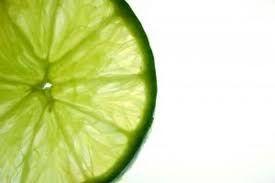 Image result for lime slice