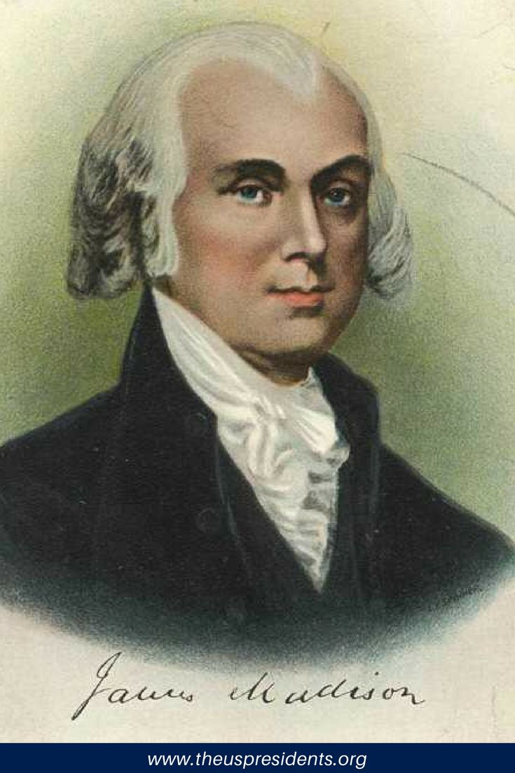on james madisons vices of the James madison was elected the fourth president of the which james monroe had negotiated and enabled the united states to expand west in vice president (s.