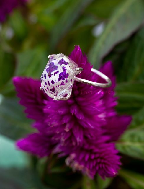 Lost Forest Jewellery: Botanical engagement ring #engagementring #botanicalring #flowerring #realflowerjewellery #uniqueengagementring #statementring #flowerengagementring