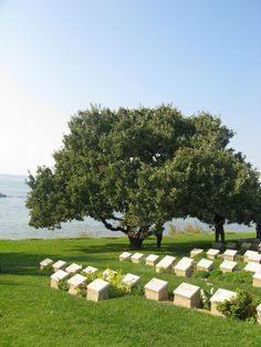 http://www.prometheustour.com/content.php?id=63    Gallipoli tours
