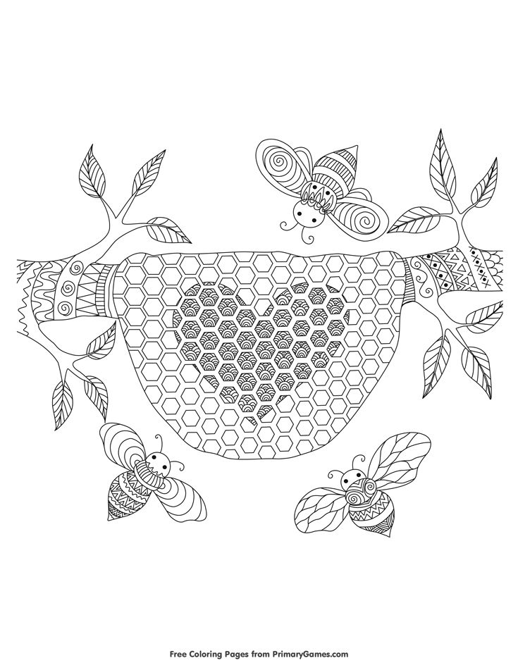 Honey And Bee Coloring Pages