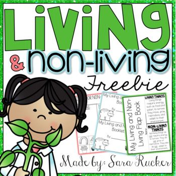 This FREEBIE is a SAMPLE from my Living and NonLiving Mini-Unit found HERE!If you enjoy and use this freebie, please take the time to leave feedback! It's very much appreciated! :)Sara Rucker, Blossoming in First GradeMaterials are intended for personal use in one classroom only.