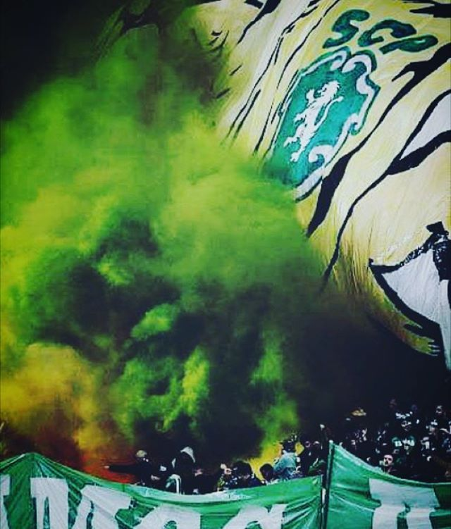 Sporting Clube de Portugal, Portugal! #pyro #ultras #hooligans #football #casualinbox