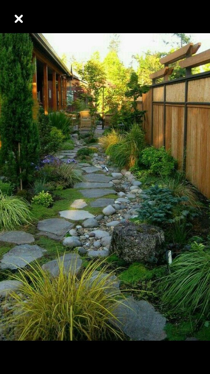 Living Privacy Fence Ideas Of course, there are other advantages to having a living fence. It provides a niche for more species to inhabit, as well as a.