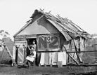 Australia's Gold Rush in pictures - Australian Geographic