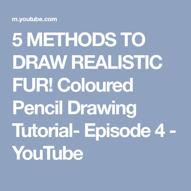 5 METHODS TO DRAW REALISTIC FUR! Coloured Pencil Drawing Tutorial- Episode 4 - YouTube