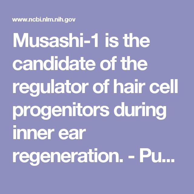 Musashi-1 is the candidate of the regulator of hair cell progenitors during inner ear regeneration.  - PubMed - NCBI