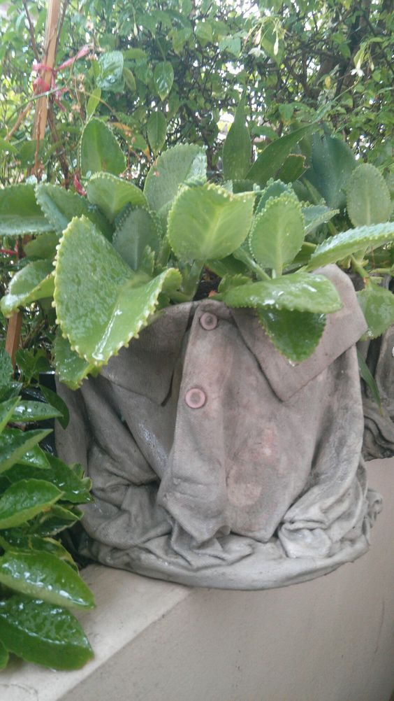 """""""Shirt container"""" made from cement <3 / #containergardening #cement #greendreams"""