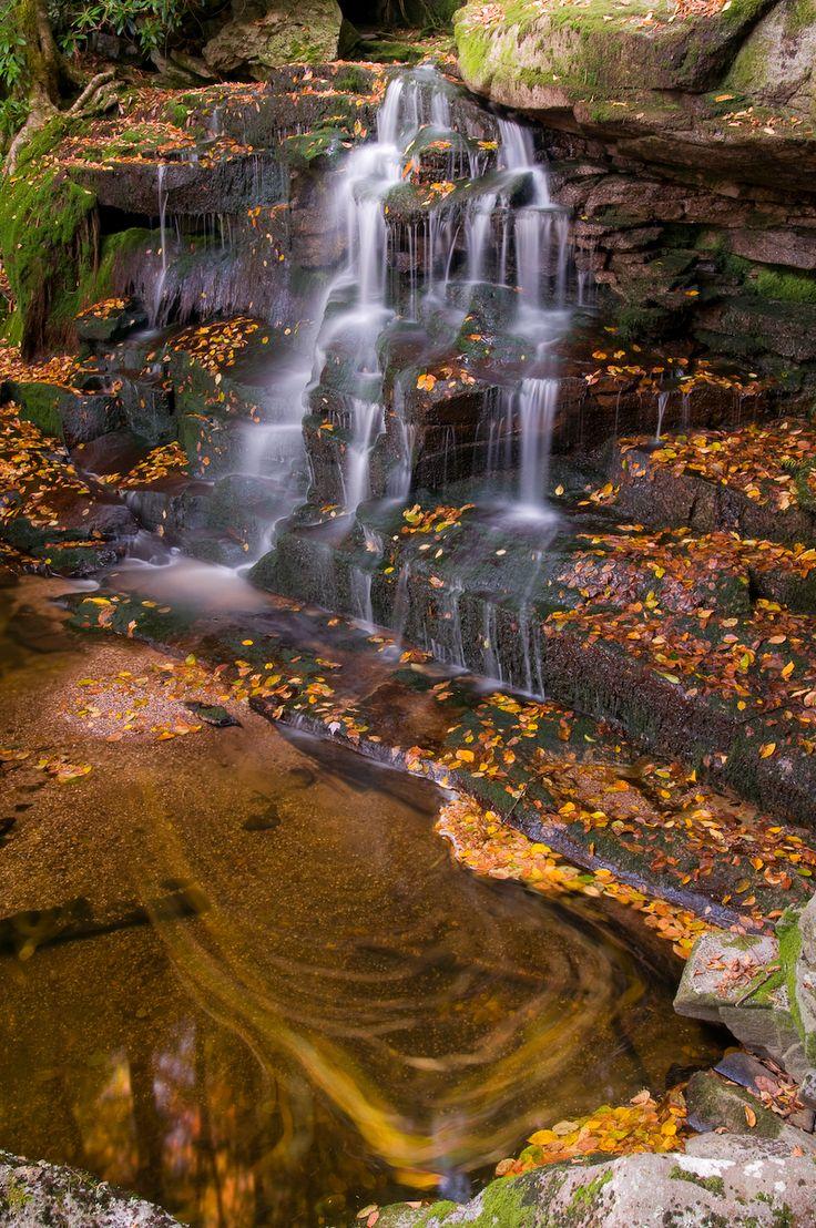 155 best Travel: West Virginia, USA images on Pinterest | West ...
